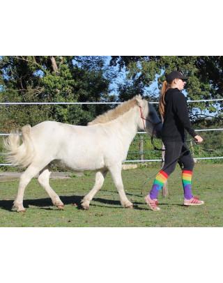 Chaussettes d'équitation Licorne Arc en Ciel sur Ma Petite Crevette