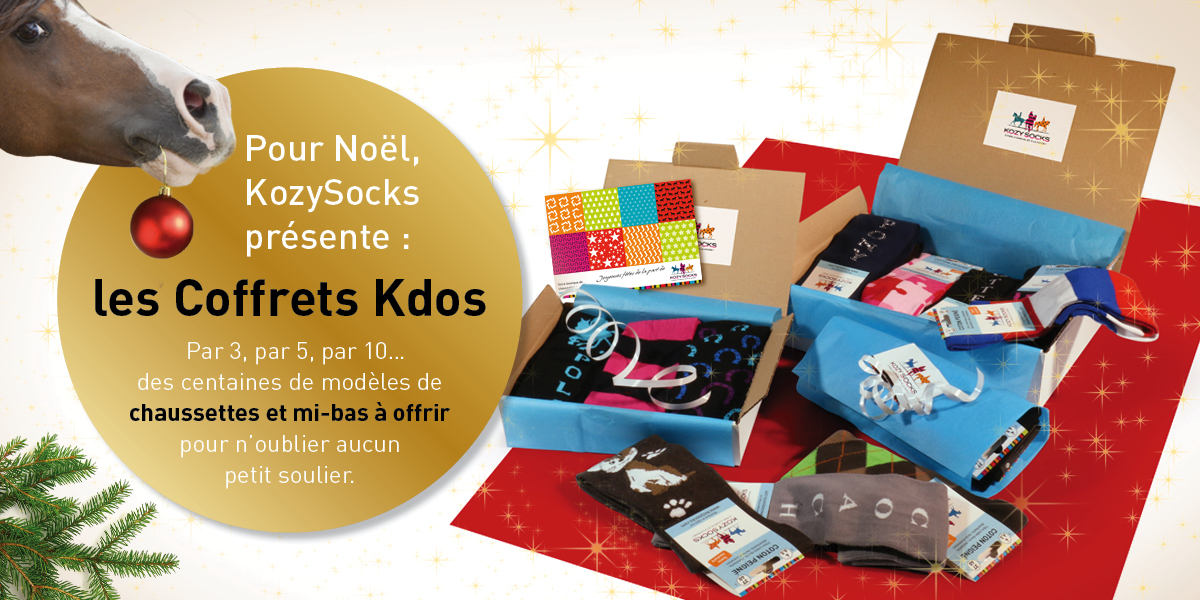 ks-header-newsletter-noel-def